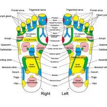 Acupuncture Cobblestone Foot Massager Mat